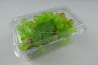 clear plastic blister packaging or strawberries punnet boxes