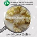 Boswellia serrate p. E de boswellia serrate extracto de ácido bowellia 65% boswellia serrata
