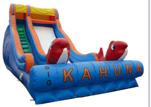 Dolphin inflatable slide giant slip and slide commercial quality inflatable slide