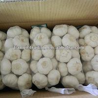 2013 china normal white garlic price