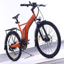 Flyer,2015 new model electric bicycle