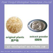 YJ-rice protein powder,organic baby food