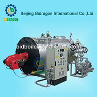 2013 Bidragon hot sale organic heat transfer carriers boiler for timber industry