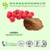 2014 Hot Sale Hawthorn Fruit P.E.10:1,hawthorn extract