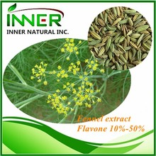 100% Natural Common Fennel Extract Powder
