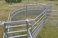 cattle yard handling equipment rail fencing