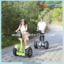 Shenzhen supplier 2 wheel electric scooter off road, Escooter blue