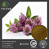 GMP factory anti-cancer red clover extract