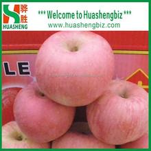 Best Quality Chinese fresh fuji apple/red apple/fresh apples