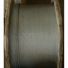Hot sale galvanized steel wire rope 10mm