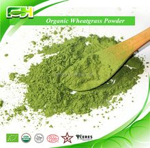 Popular Health Drink Organic Wheat Grass Powder