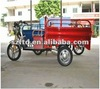 electric tricycle for loading goods with 800W