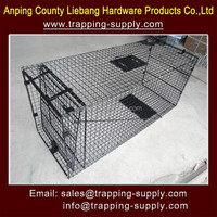 Live Animal Trap Dog Bobcat Large Raccoon Cage Trap Fox And Badger Traps For Sale