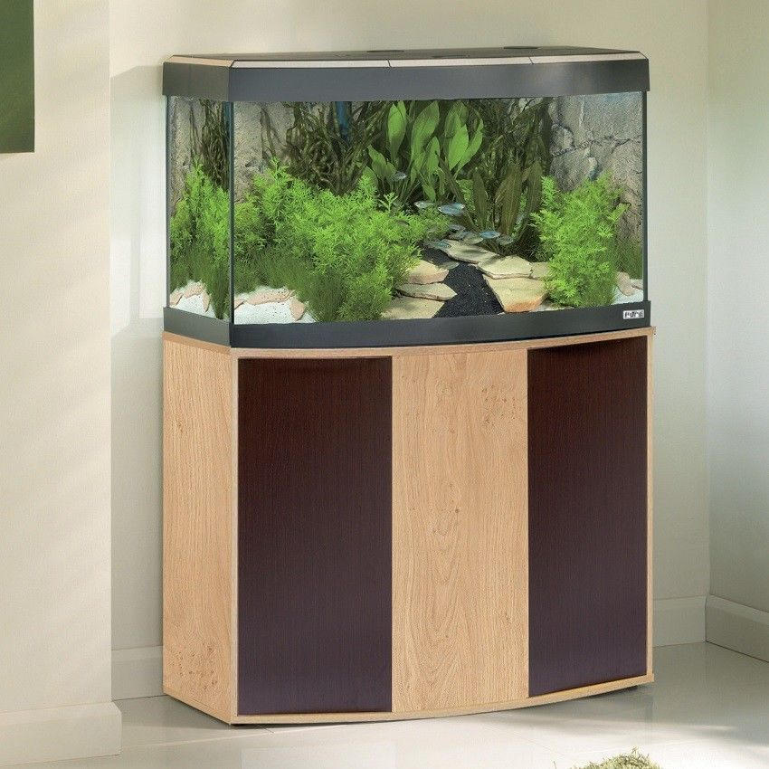 Sea bass acrylic aquarium glass fish tank x thick oak for Acrylic vs glass fish tank