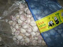 2015 new chinese natural fresh normal white garlic