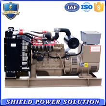 Hotel Use 250KVA CNG Fuel Powered Generator Set CNG Generators