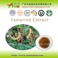 a base de hierbas orgánico extracto de tamarindo para suplemento de la salud