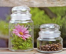 25oz glass jar with glass lid