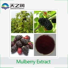 Factory supply mulberry fruit extract/dried mulberry fruit Anthocyanidin