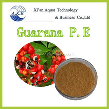 10 years key product guarana drink and hot supply factory supply natural guarana extract 10% 20% FREE SAMPLE