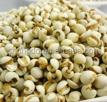 Natural Coix seed extract clearing damp and promoting diuresis Coix seed extract materials