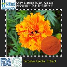 10 Years Gold Supplier Targetes erecta extract/zeaxanthin/ clutein: 20%