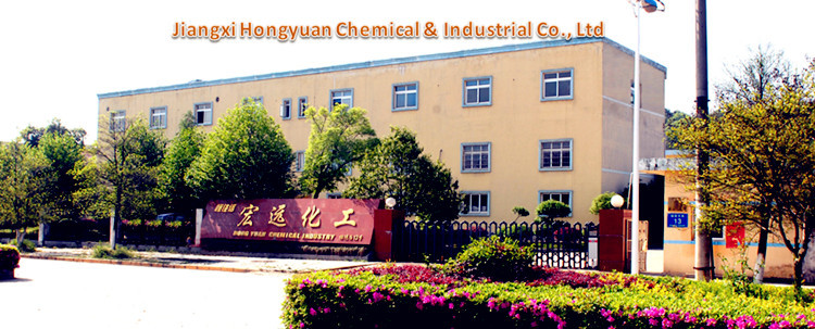 Company Photo