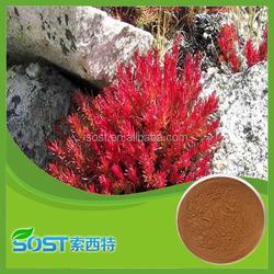 Hot sale 3% Rosavin & 3% salidroside rhodiola rosea extract