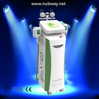 Hot new products for 2014!!! Best result multifunctional slimming machine beauty tighten cryolipolysis system cryo