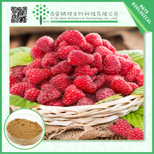 ISO & GMP Products Natural Raspberry Extract 10:1 With Free Sample
