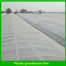 Agricultural high tunnel plastic film greenhouse