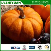 High quality fresh pumpkin from china