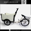 electric air cool trolley with BRI-C01 three wheel electric tricycle cargo box