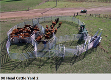 90 HEAD WORKING CAPACITY CATTLE YARDS