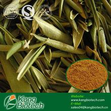 El mejor precio de oleuropeína 20% extracto- 98% hplc de oliva extracto de hoja de