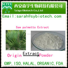 supply high quality Saw palmetto extract