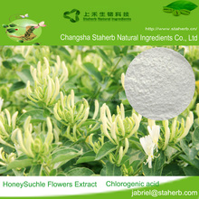 High quality Honeysuckle flower extract,honeysuckle extract powder pure chlorogenic acid 10%-98%