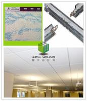 hall ceiling pop design