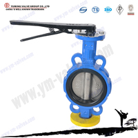 tomoe cast iron wafer double shaft butterfly valve PN16 DN100