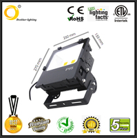 100 watt led flood light IP65 30w 50w 100w 150w 200w 50w led flood light AC85-277V bridgelux meanwell driver factory price