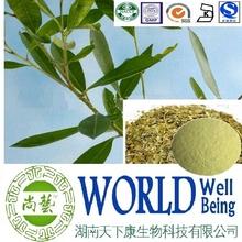 Hot sale Paraguay tea extract/Caffeine 5%/Yerba mate extract/Regular blood pressure plant extract