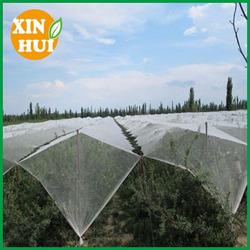 ANTI HAIL NETTING/FRUIT CROP/POND NETTING
