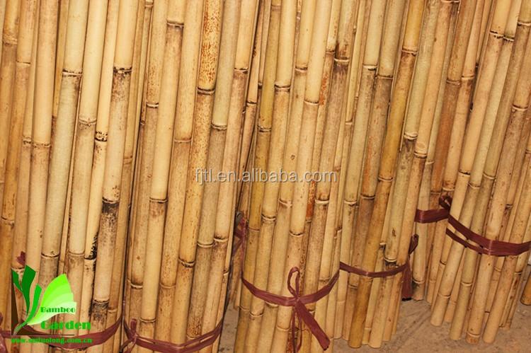 Большой сухой сырье Moso бамбуковые палки для продажи