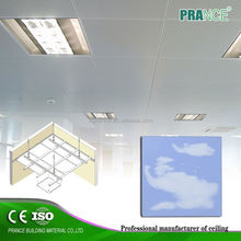Cheapest decorative suspended antibacterial ceiling