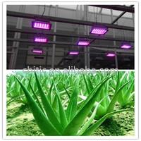 Greenhouse Led plant Light for growing vegetable, flower, medicinal plants