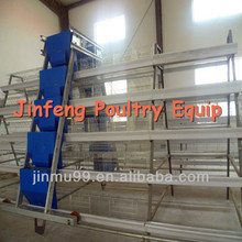 Chicken boilers and Layer egg breeds