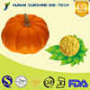 wholesale alibaba 100% natural free sample Pumpkin Powder/Pumpkin fruit Powder as powder drink