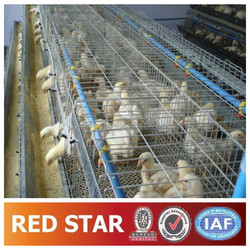 Chicken Breeding Cage (30 Years Factory CE,SGS,ISO9001)