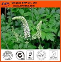 Triterpene Glycoside in black cohosh extract,natural black cohosh P.E