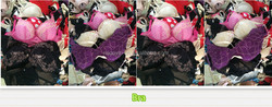 2015 fashionable original second hand clothing container of used clothes,used clothing lots,used clothes cream uk